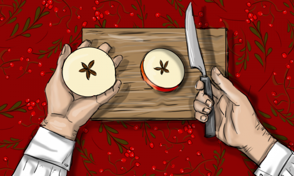 Vianočná šifrovačka - online rodinná hra - ukážka príbehu